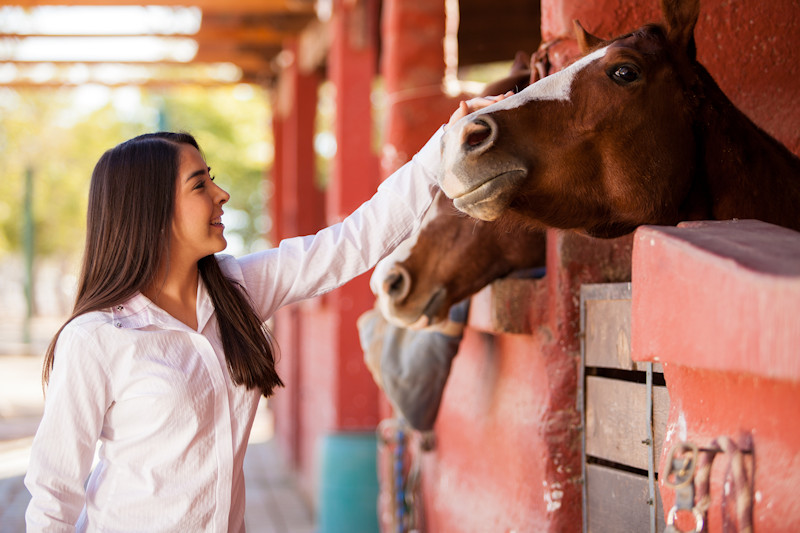 Girl petting horse in farm stables
