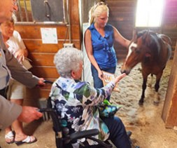 Woman petting horse on a farm tour